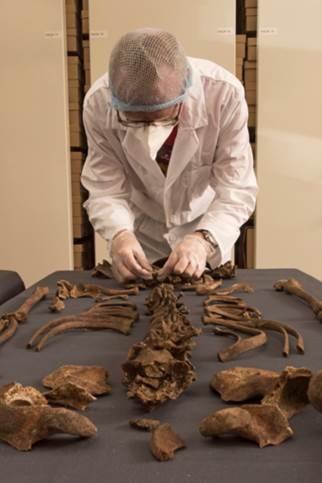 Alter Zuwandererfriedhof unter Zentrum von London entdeckt