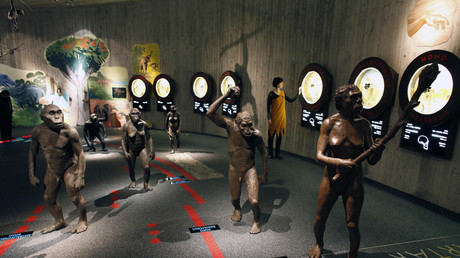Eine Zeitachse der menschlichen Evolution mit lebensgroßen Statuen unserer Vorfahren wird im Neandertaler-Museum der nordkroatischen Stadt Krapina gezeigt.