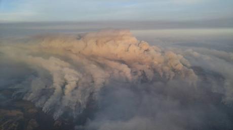 Es liegt was in der Luft: Brände in Kalifornien bedrohen erste legale Marihuana-Plantagen