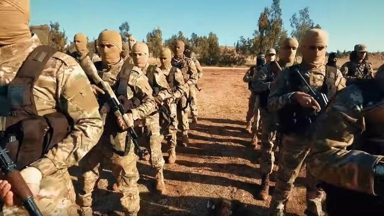 Ex-Premier von Katar: Waffenlieferungen von Saudis und USA nach Syrien gingen auch an Al-Nusra