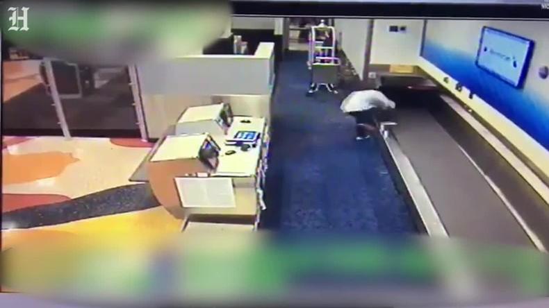 Sperrgepäck: Mann versucht durch Gepäckkarussell das Rollfeld am Flughafen Miami zu erreichen