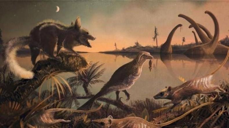 Zähne von 145 Millionen Jahre alten Verwandten des Menschen entdeckt
