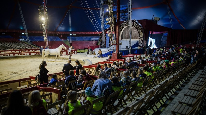Tierschutz: Italien verbietet als 41. Land weltweit die Verwendung von Zirkustieren