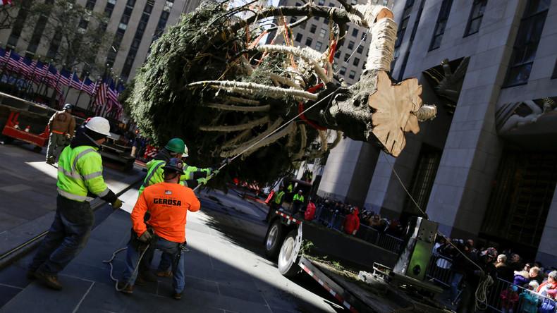 Es weihnachtet schon: Christbaum in New York aufgestellt