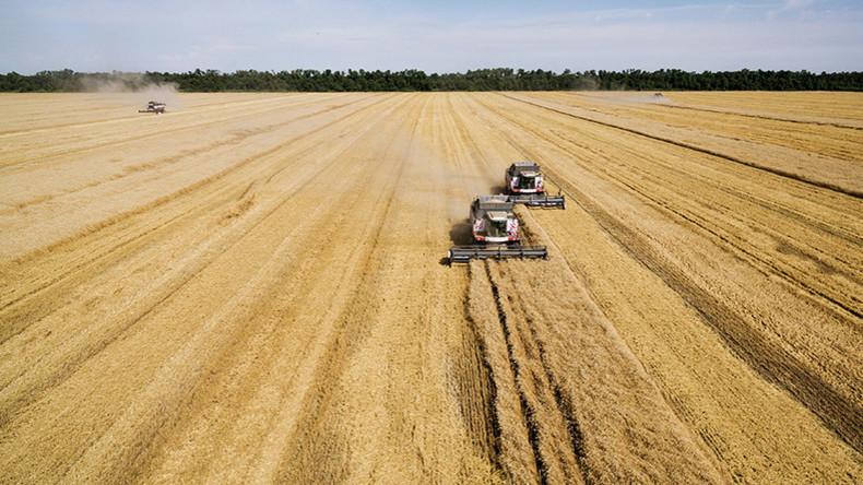 Russland verdrängt USA als landwirtschaftliche Supermacht