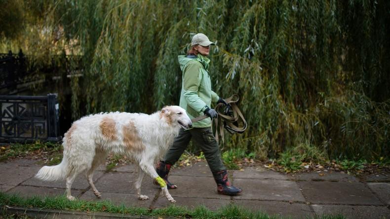 Hundebesitzer leben länger