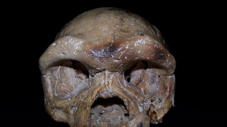 Neue Erkenntnisse über 1978 gefundenen fossilen Schädel: Stammt der Mensch doch nicht aus Afrika?