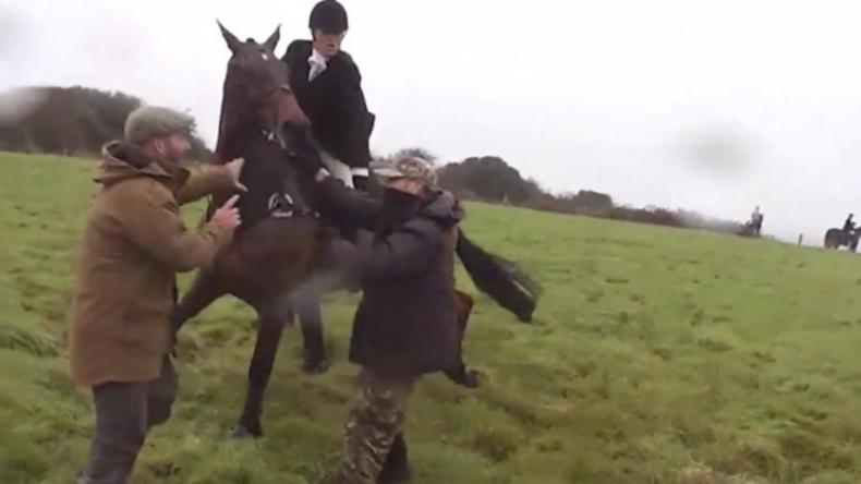 """""""Tatsch mein Pferd nicht an!"""" - Reiterin vermöbelt Tierschützer mit Peitsche"""