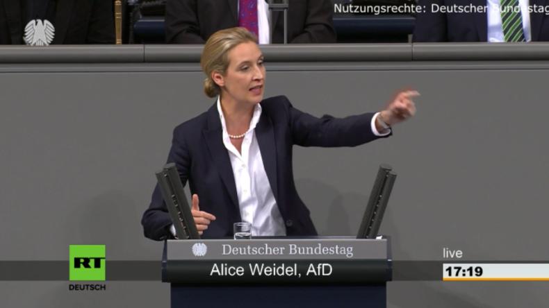 """AfD-Fraktionschefin Weidel im Bundestag: """"Mit der Euro-Rettung enteignen Sie die Deutschen"""""""