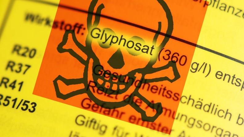 Nach Glyphosat-Entscheidung: Merkel und SPD empört über Alleingang des CSU-Agrarministers