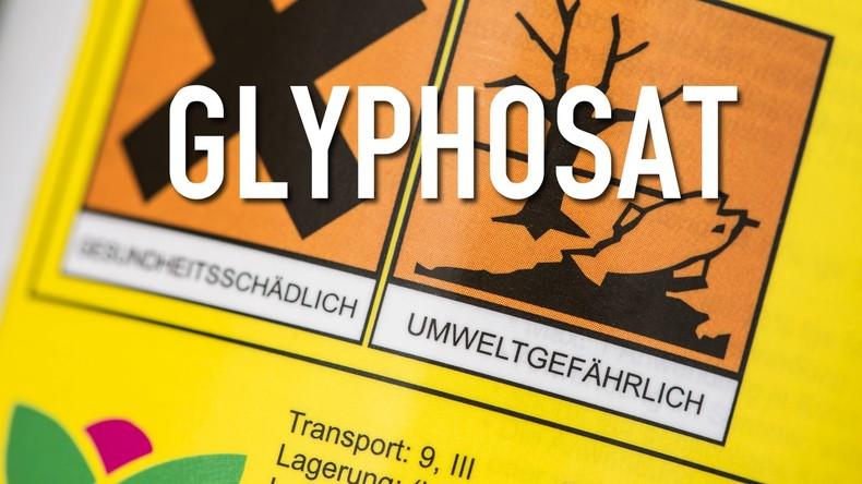 Koalitionspoker: SPD-Politiker fordern Zugeständnisse von Merkel nach Glyphosat-Verlängerung