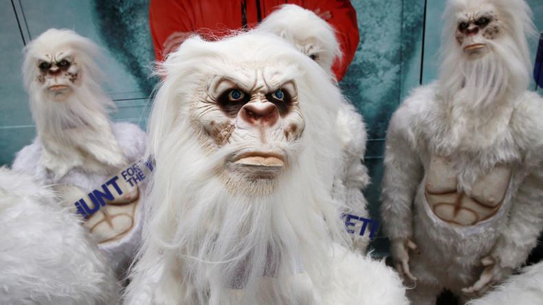 Himalaya-Monster: Studie löst Yeti-Rätsel