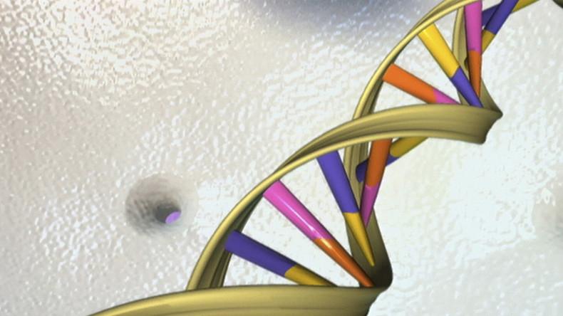Wissenschaftlern gelingt Erschaffung hybrider Lebensformen