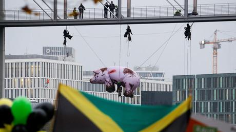 """""""Jamaika: Lasst die Sau raus"""" hieß die Botschaft der Umwelt-Aktivisten von Greenpeace an die Sondierer in Berlin"""