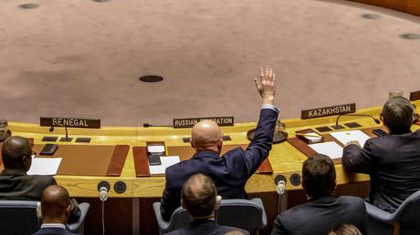 Russland stimmt im UN-Sicherheitsrat gegen Japans Resolution zu OPCW-Mission in Syrien