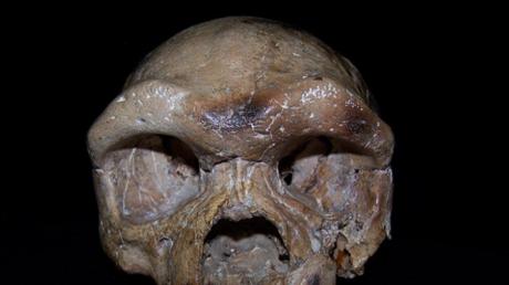 Als Dali-Mensch (oder auch Dali-Schädel) wird ein 1978 im Kreis Dali der bezirksfreien Stadt Weinan (chinesische Provinz Shaanxi) entdeckter, gut erhaltener fossiler Schädel eines männlichen Jugendlichen bezeichnet.