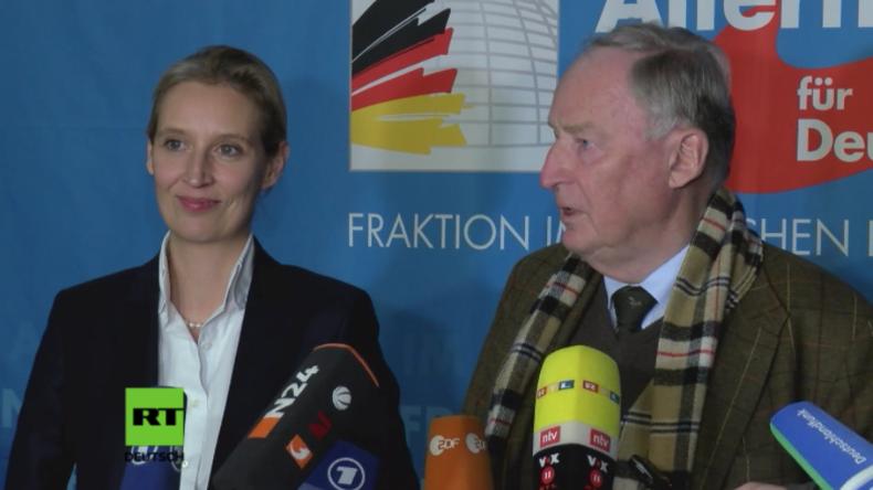 """AfD nach Treffen mit Steinmeier: """"Wir werden eine Merkel-Regierung nicht tolerieren"""""""