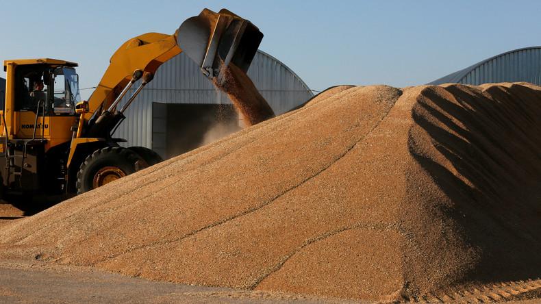 Saudi-Arabien könnte Sprungbrett für russische Agrarprodukte nach Afrika werden