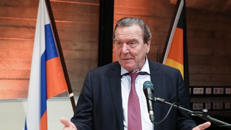 Schröder rät SPD: Möglichst schnell eine große Koalition