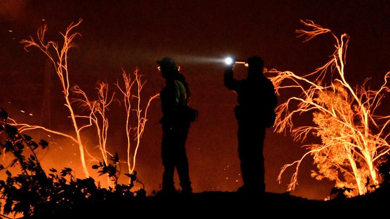 """""""Thomas-Feuer"""" stellt Rekord unter Buschbränden in Kalifornien auf"""