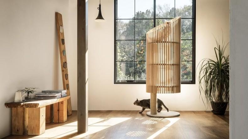 Designer-Katzenhaus in Japan präsentiert: Preis beträgt jährliche Miete einer Wohnung
