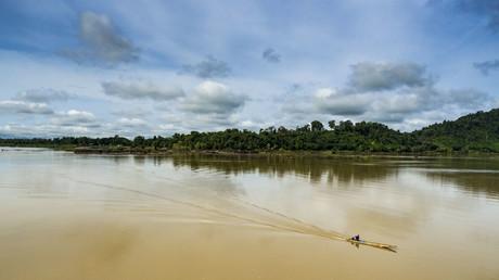 Bizarre Tierwelt am Mekong: Forscher entdecken 115 neue Arten