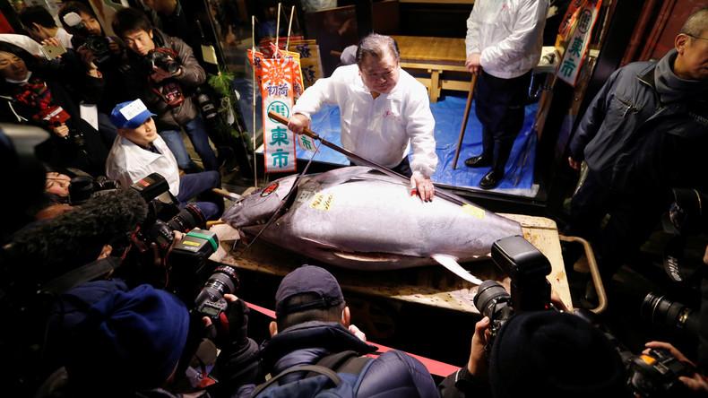 Exorbitanter Preis für PR-Aktion: Thunfisch in Japan für 270.000 Euro ersteigert