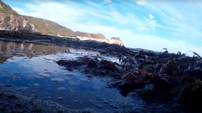 Kamera überquert Ärmelkanal und Nordsee, um wieder bei Besitzer zu landen