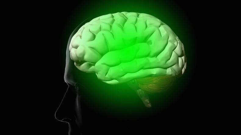 Wissenschaftler entdecken WLAN-artigen Mechanismus im menschlichen Gehirn