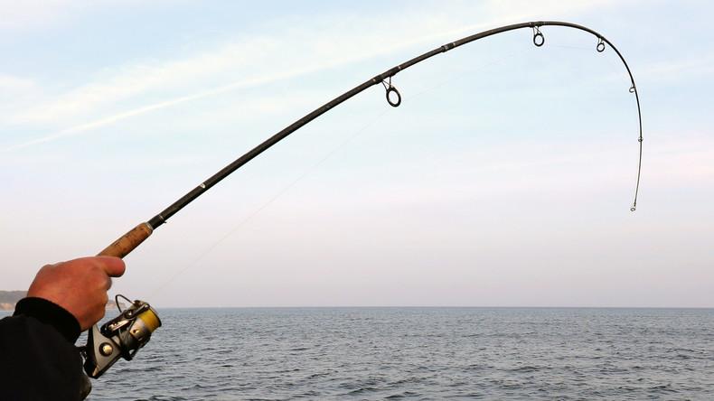Die nötige Portion Glück: Australier fischt eigenes Smartphone aus dem Meer