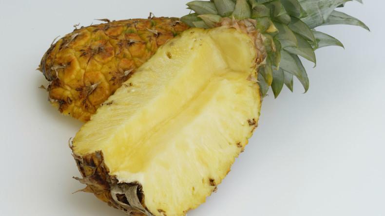 Geheimnisvolle Früchte: Tonnen von Ananassen wegen versteckten Kokains beschlagnahmt