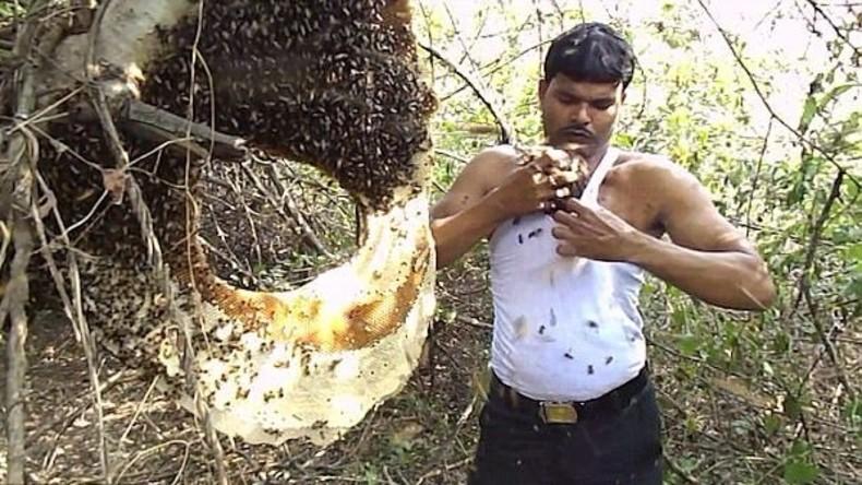 Imker bringt Tausende Bienen unter sein T-Shirt und lächelt nur