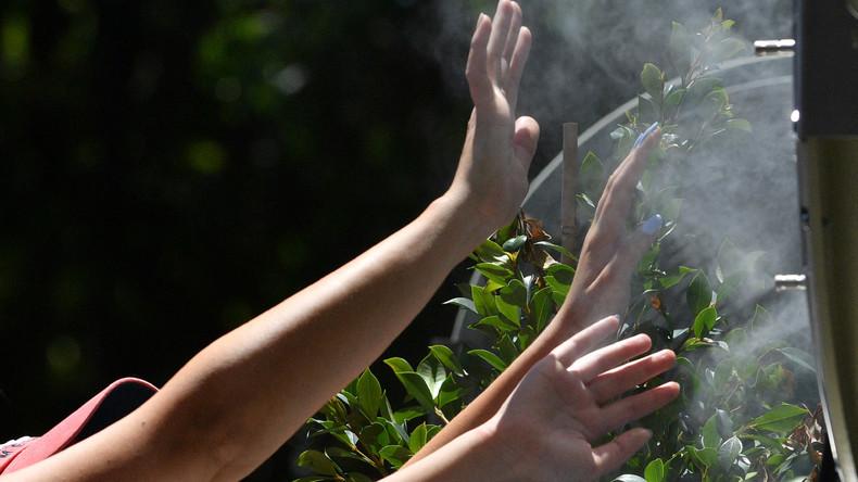 Hitzetod: Mehrere Australier kommen wegen zu hoher Temperaturen ums Leben