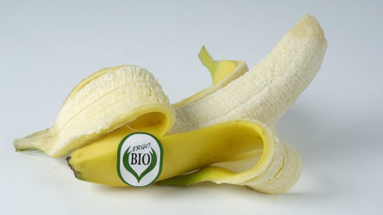 Tückisches Versteck: Riesige Drogenladung zwischen Bio-Bananen in Nordrhein-Westfalen entdeckt