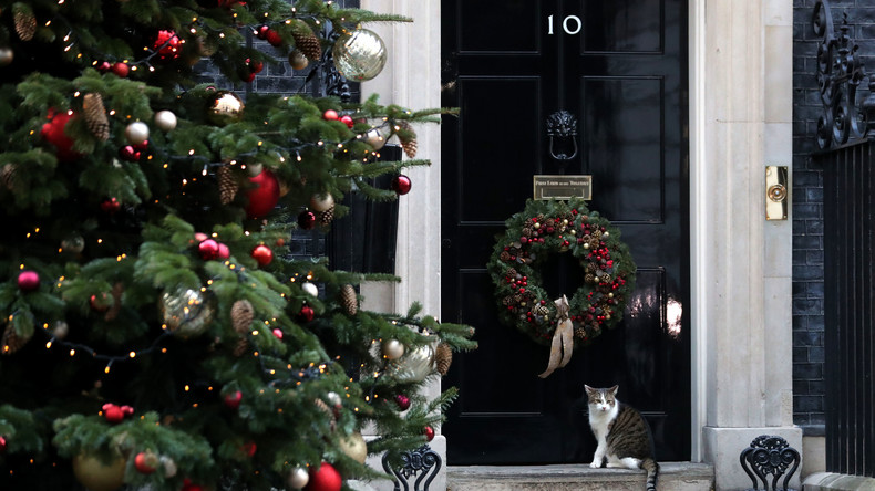 Downing Street: Wegen Nachlässigkeit des Mäusejägers muss Sanitätsdienst 40 Mal bestellt werden