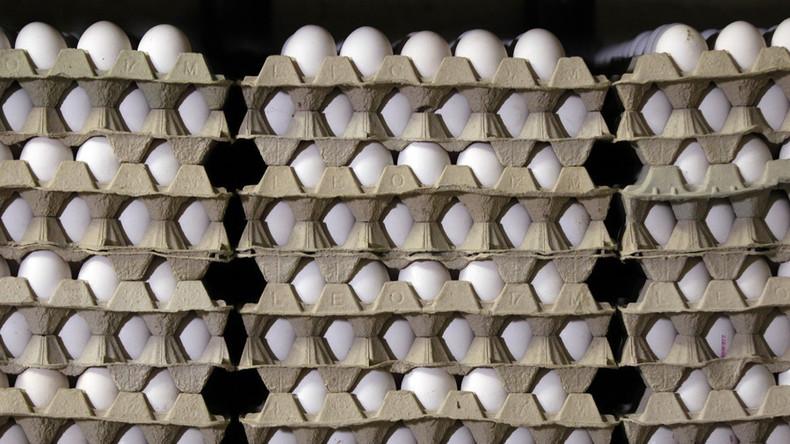 Lost in Translation: Norwegisches Olympiateam bekommt 15.000 statt 1.500 Eier geliefert