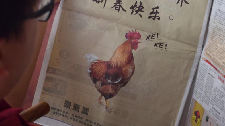 Malaysische Regierung wegen bellendem Hahn in Anzeige zum chinesischen Jahr des Hundes unter Druck