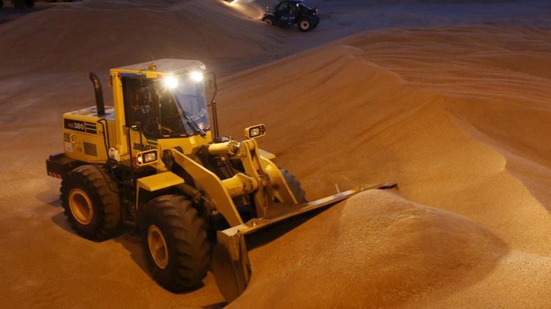 Ägypten überholt China: Export russischer Waren an den Nil steigt stark an