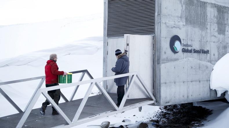 Saatgut-Depot in Arktis wird wegen Klimawandel umgebaut