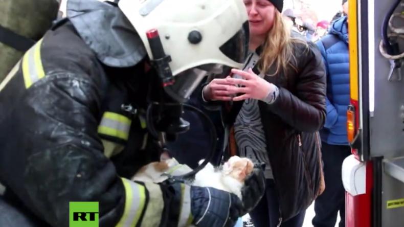 Russland: Feuerwehrmänner holen scheintote Katze aus brennender Wohnung zurück ins Leben