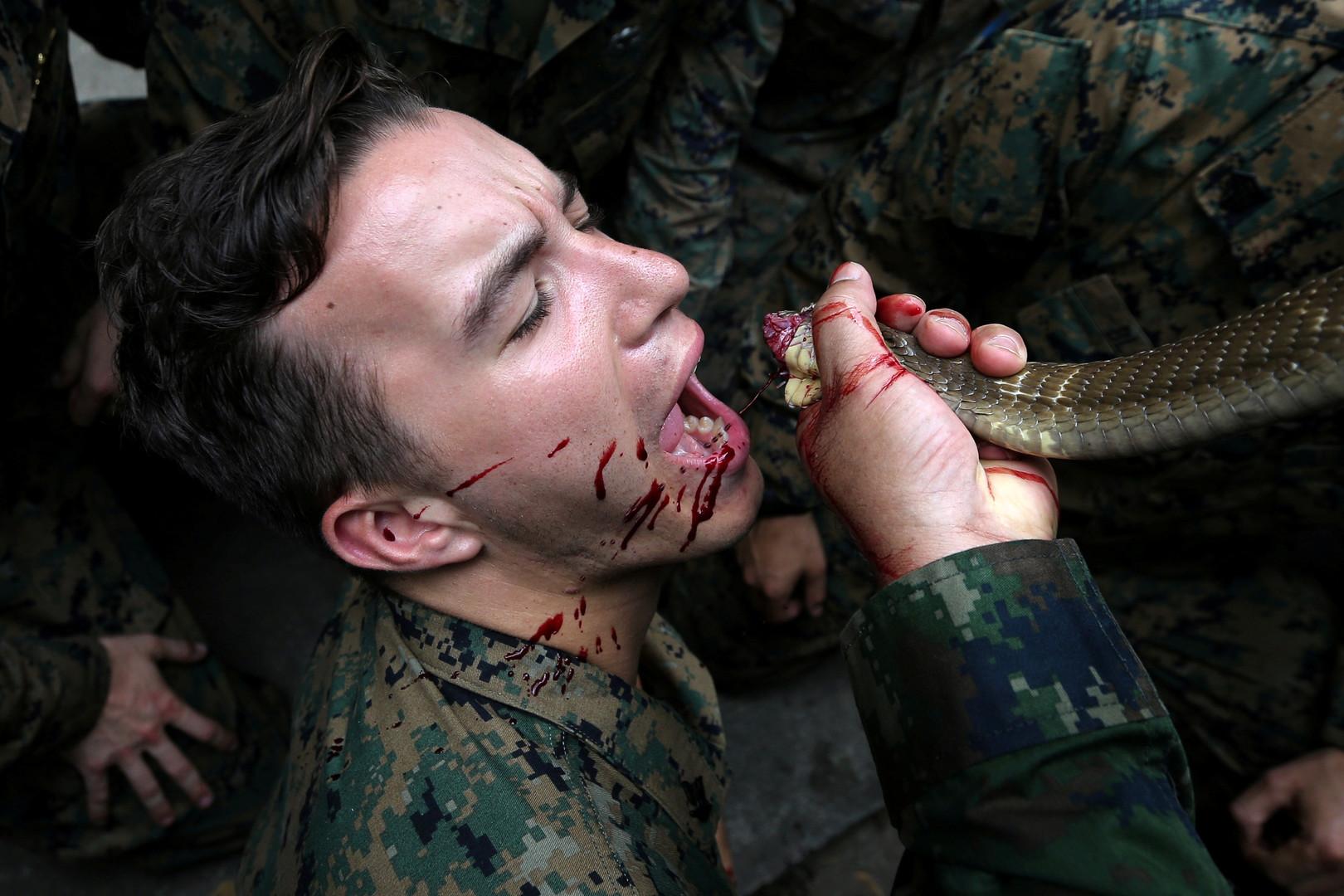 """US-Soldat trinkt das Blut einer Kobra, im Rahmen des Überlebenstrainings des Manövers """"Cobra Gold 2018"""" in der thailändischen Chonburi Provinz, 19. Februar 2018."""