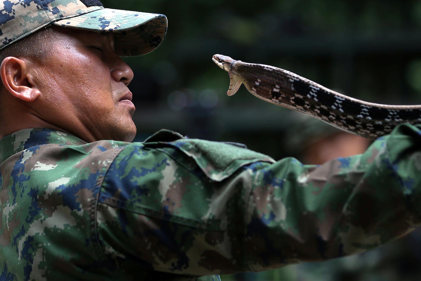 """Thailändischer Navy Lehrer macht vor, wie man eine Schlange fängt, Internationales Manöver""""Cobra Gold 2018""""  in der thailändischen Chonburi Provinz, 19. Februar 2018."""
