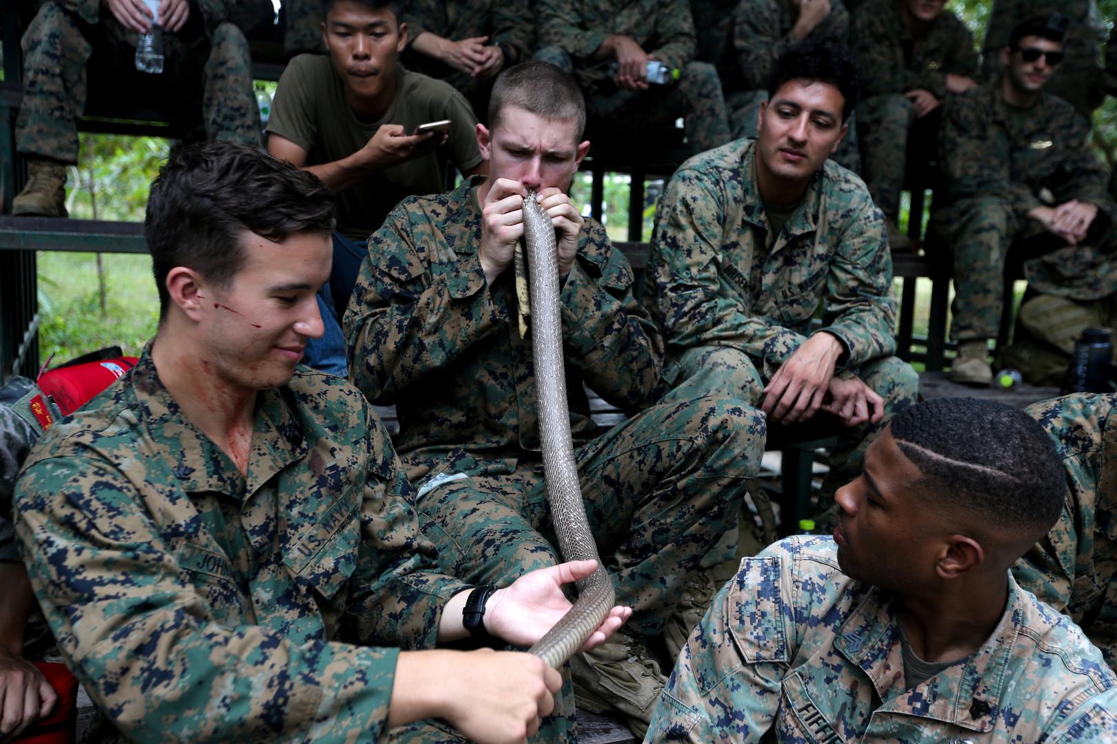"""US-Soldat bläst in eine Kobra, nach dem Entfernen der Innereien beim Überlebenstraining von """"Cobra Gold 2018"""" in der thailändischen Chonburi Provinz, 19. Februar 2018."""