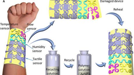 Wissenschaftler entwickeln Smart-Haut mit Regenerationsfunktion – Wunden heilen in 30 Minuten