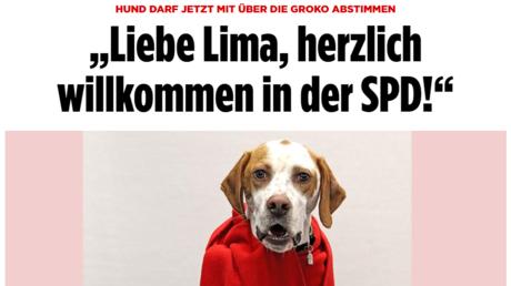 Auf den Hund gekommen: Wie die BILD-Zeitung die Demokratie retten will