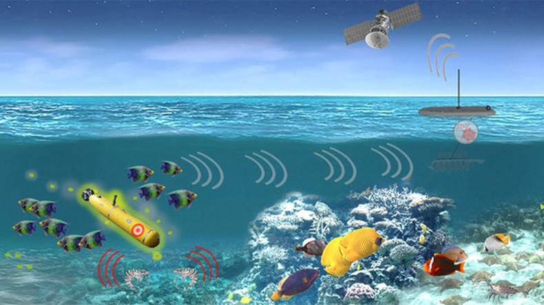 USA bereiten Einsatz von Meeresorganismen zur Ausspähung von Unterwasserfahrzeugen vor