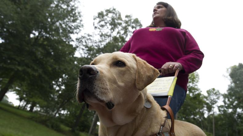 Mit Handy als Blindenführer: Microsoft entwickelt Assistenzapp für Sehbehinderte
