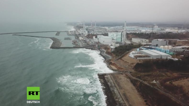 """""""Unser Fisch soll überall gegessen werden"""" - Fischfang vor Fukushima nimmt wieder Fahrt auf"""