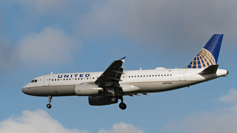 Erneut Skandal mit United Airlines: Hund stirbt im Flugzeug-Gepäckfach
