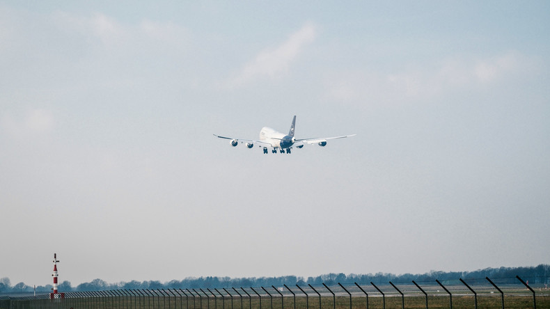 Vogelspinne in Businessklasse: Airline verweigert Entschädigung für Verspätung